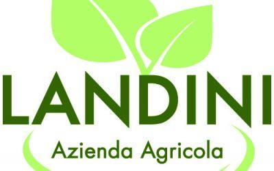 landini_logo (2)