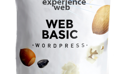 Website Basic